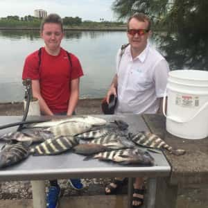 Sheepshead cobia and mackerel with tons of snapper